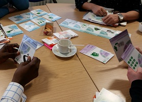 Image of card sorting activity from training workshop